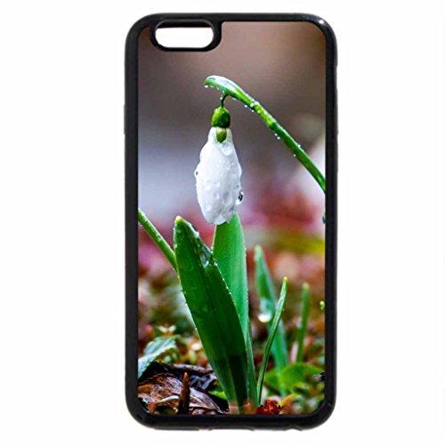 iPhone 6S / iPhone 6 Case (Black) Flowers