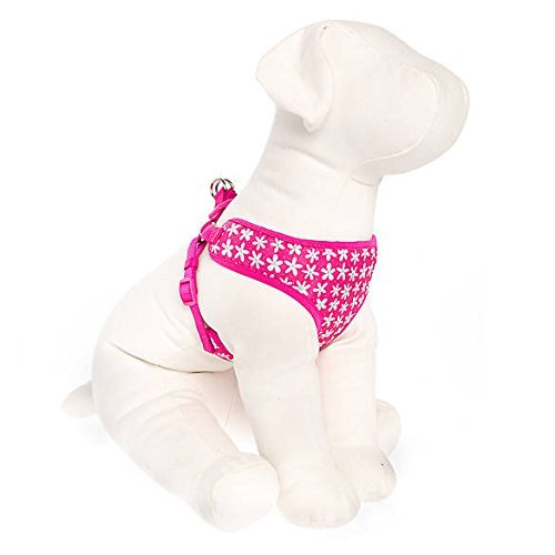 - Top Paw Daisy Comfort Dog Harness Medium