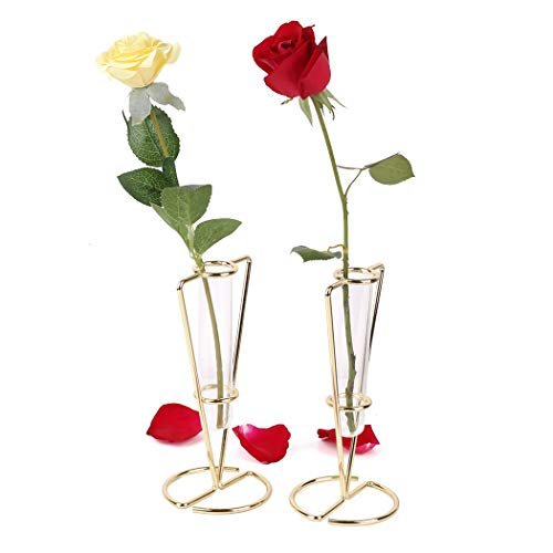 Moutik Small Flower Glass Vases, Gold Metal Display Stand Set of 2 Crystal Tube vases for centerpieces, Decorative vases for Living Room Home Table or Wedding