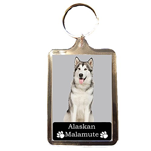 Alaskan Malamute - Collectable Dog Keyring