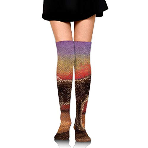 Zuo Hong Hand Painted Cactus Canyon Art Print Casual Knee High Socks Fashion Athletic Stockings