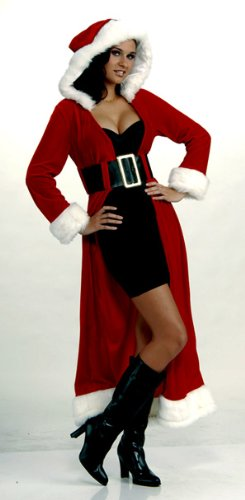 Forum Novelties Women's Enchanting Miss Christmas Adult Costume, Multi, (Winter Solstice Party Costumes)