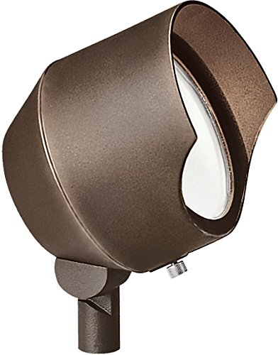 Kichler 15381BBR Cast Brass Accent 1-Light 12V, Bronzed Brass