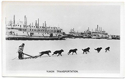 Real Photo Postcard Dog Sled and Steamships Yukon Transportation~104362