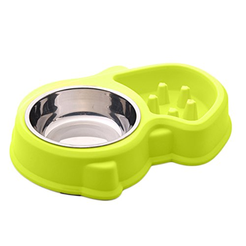 Pet 2 in 1 Bowl Set-Slow Feeder Bowl & Stainless Steel Bowl,Fun Interactive Feeder Bloat Stop,Eco-friendly Durable Non Toxic-Green