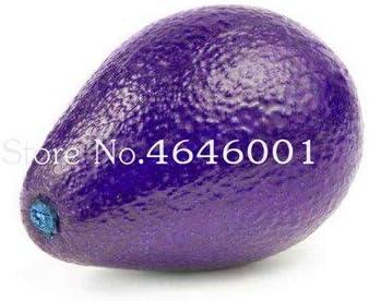 AGROBITS 5 coeur pois graines Candioum Haiica-Cabum Graines de fruits dornement