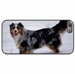 iPhone 5 5S Black Hardshell Case australian shepherd snow dog walk rest Desin Images Protector Back Cover