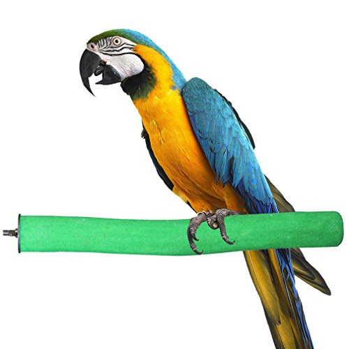 KINTOR Bird Perch Rough-surfaced Nature Wood Stand Toy Branch for Parrots Green ()