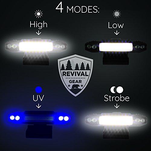 Buy flash light head strap
