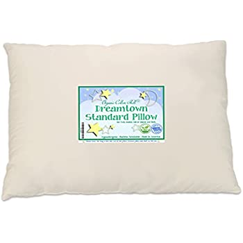 157c56fab607 Amazon.com  Dreamtown Kids Standard Size Pillow with Organic Cotton ...