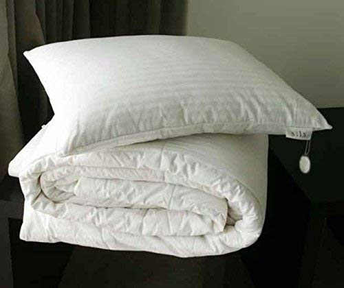 King SILX-PIL-KNG-2 SILX Silk Filled Double Fill Pillow
