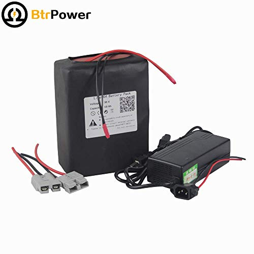 ike Lithium LiFePO4 Battery for Electric Bicycle Scooter with BMS Rechargeable Powers Charger ()