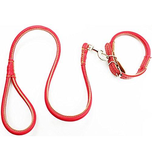 Lederleine und Hundehalsband Set Runde Führleine Welpenleine Hundeleine mit Lederhalsband für kleine mittlere große Hunde Rot S