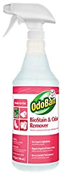 OdoBan 960062-QC12 Ready-to-Use BioStain and Odor Remover, 32 oz. (Pack of 12)