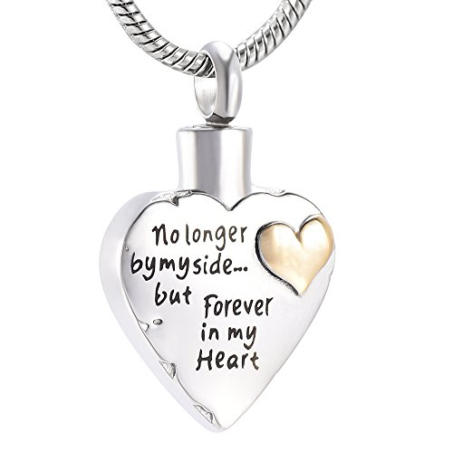 memorial jewelry No Longer by My Side,But Forever in My Heart Carved Locket Cremation Urn Necklace for Pet Dog Cats (Blue-4) (Forever In My Heart Lockets And Charms)