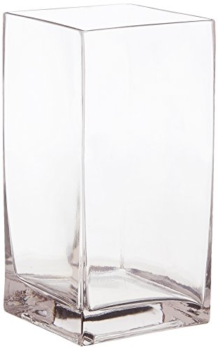 (WGV Clear Square Block Glass Vase, 4 by 8-Inch)