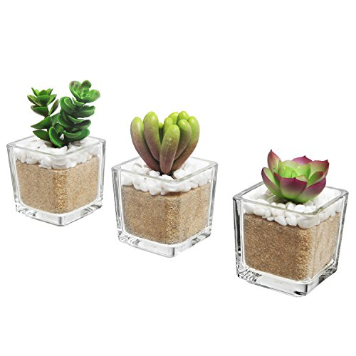 Set of 3 Modern Home Decor Mini Artificial Succulent Plants Potted in Glass Cube-Shaped Vase