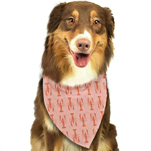 YanHill Lobster Seafood Pet Bandana Triangle Dog Cat Neckerchief Bibs Scarfs Accessories for Pet Cats and Baby Puppies