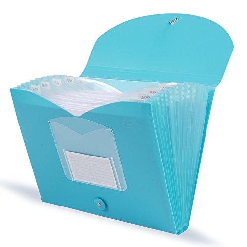 - DocIt 13 Pocket Expanding File Folder for Letter Size Document Storage, Fits Standard File Drawers, Color May Vary (00872)