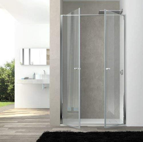 Puerto ducha Saloon DOS puertas Cristal 6 mm Transparente h.200 cm Eden: Amazon.es: Bricolaje y herramientas