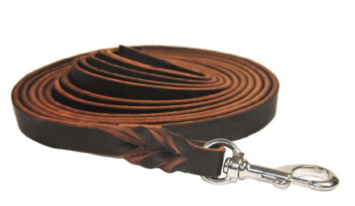 Dean and Tyler Braided Track Dog Leash with Stainless Steel Hardware and Handle, 20-Feet by 3/8-Inch, Brown by Dean & Tyler