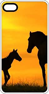 Horse & Colt Silhouette Soaking Up The Golden Sun White Plastic Case for Apple iPhone 5 or iPhone 5s