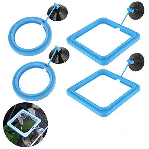 Hatisan 4 Pcs Fish Feeding Ring Square and Round Shape, Aquarium Fish Tank Feeding Ring/Suction-Cup Floating Food Circle, Eco-Friendly Fish Safe Food Feeder