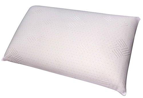 talalay latex pillow eco friendly memory foam alternative import it all. Black Bedroom Furniture Sets. Home Design Ideas