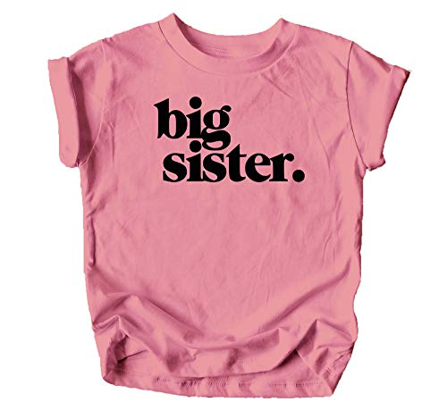 Bold Big Sister Colorful Sibling Reveal Announcement T-Shirt for Baby and Toddler Girls Sibling Outfits Mauve Shirt