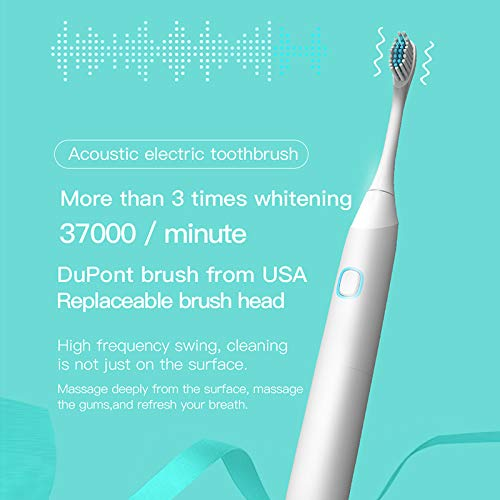 Electric Toothbrush IPX7 Waterproof Whitening Prevent Tooth Decay Removes Plaque with 1 Extra Replacement Brush Heads (BLACK)