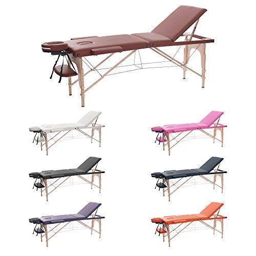 H-ROOT 3 Zonen Massagetisch Tragbares Leichtes Deluxe Couch Bett Sockel Therapie Tatoo Salon Reiki Healing Schwedische Massag