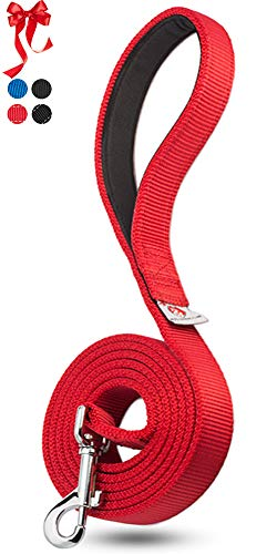 PetsLovers 2-Layer Dog Leash - Heavy Duty Strap, Padded Handle - 6 Feet Long, 1 Inch Wide