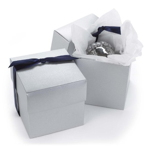 25th Anniversary Favor Boxes (Hortense B. Hewitt 2-Piece Cup Cake Boxes, Silver Shimmer, Set of 25)