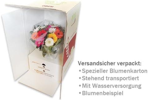 gelbe Rosen Blumenstrau/ß 10x echte langstielig und vasenfertig