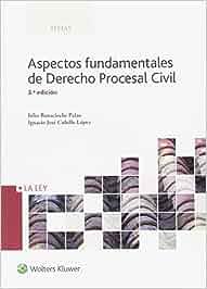 Aspectos fundamentales de Derecho Procesal Civil 3ª ed