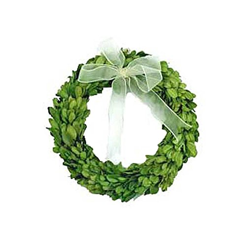 Preserved Boxwood Round Wreath 8'' by Mills Floral