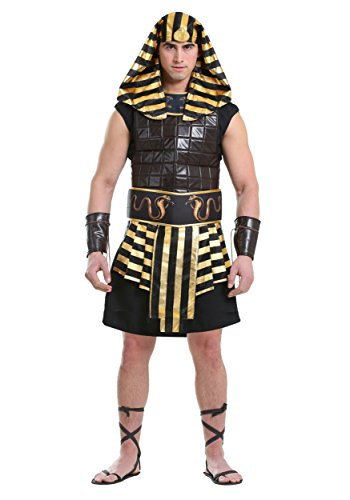 Adult Plus Size Ancient Pharaoh 2X