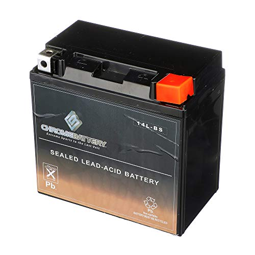 Rechargeable Replacement YTX14L-BS High Performance Power Sports ()