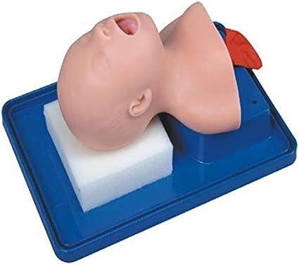 Un modelo de entrenamiento de intubación traqueal neonatal, que se usa para observar la expansión de los pulmones y el estómago al soplar aire, y se usa para modelos de entrenamiento de enfermería