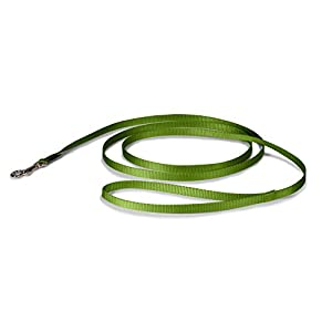 "PetSafe Leash, 3/8"" x 6', Small, Apple Green"