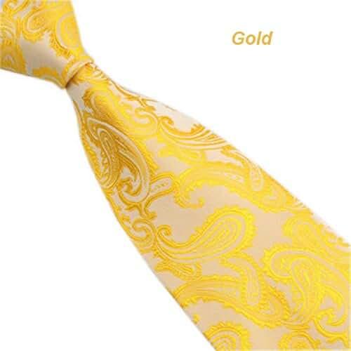 Baishitop Classic Paisley Mix Color Jacquard Woven Men's Tie Necktie