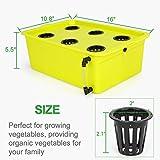 GROWNEER 6 Sites Hydroponics Grower Kit Household