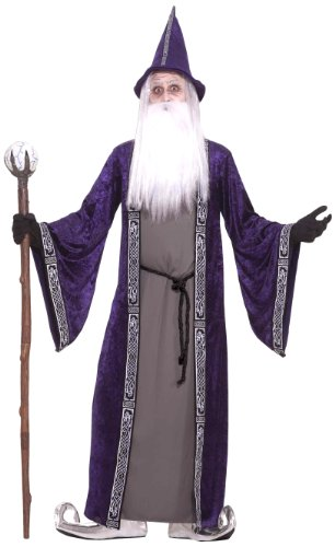 Forum Novelties Men's Wizard Adult Costume, Purple,