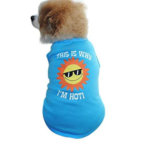 Pet Clothes, Duseedik Puppy Dog Cat Sweater Summer Lollipop Shirt Small Clothes Vest T Shirt -