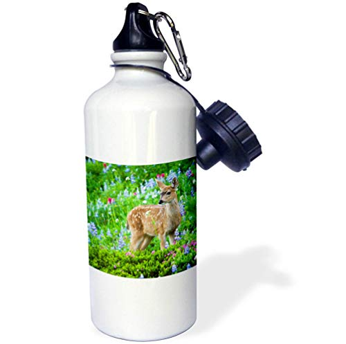 (3dRose Danita Delimont - Deer - Black-Tail Deer Fawn, Cascade Wildflowers - Flip Straw 21oz Water Bottle (wb_315167_2))