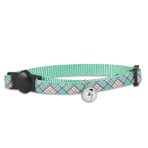 Aspen Cat Bell (Aspen Pet Products Petmate Collar, Teal, 3/8