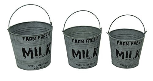 (Set of 3 Galvanized Metal Farm Fresh Milk Pails with Built-in)