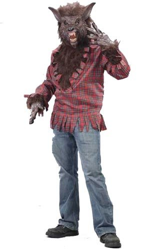 (Fun World Men's Werewolf Costume, Brown,)