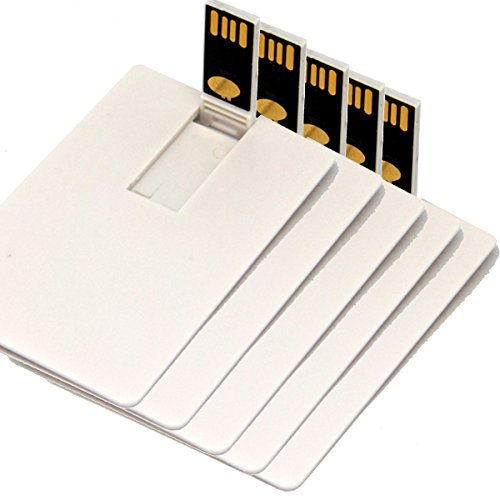 Credit Card USB Flash Drive Blank DIY Memory Stick Wholesale Bulk Pack 5 (2GB, White)