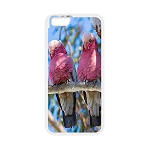 """AKERCY Kissing Parrots Bird Phone Case For iPhone 6 (4.7"""") [Pattern-3]"""